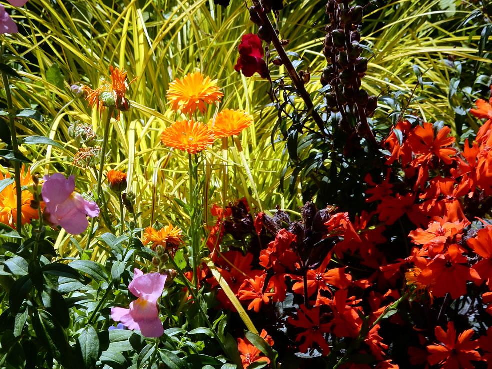 Great Dixter plantencombinaties