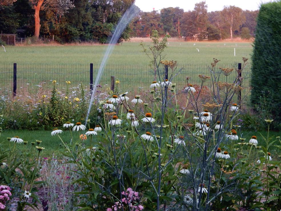 Sproeien in de tuin